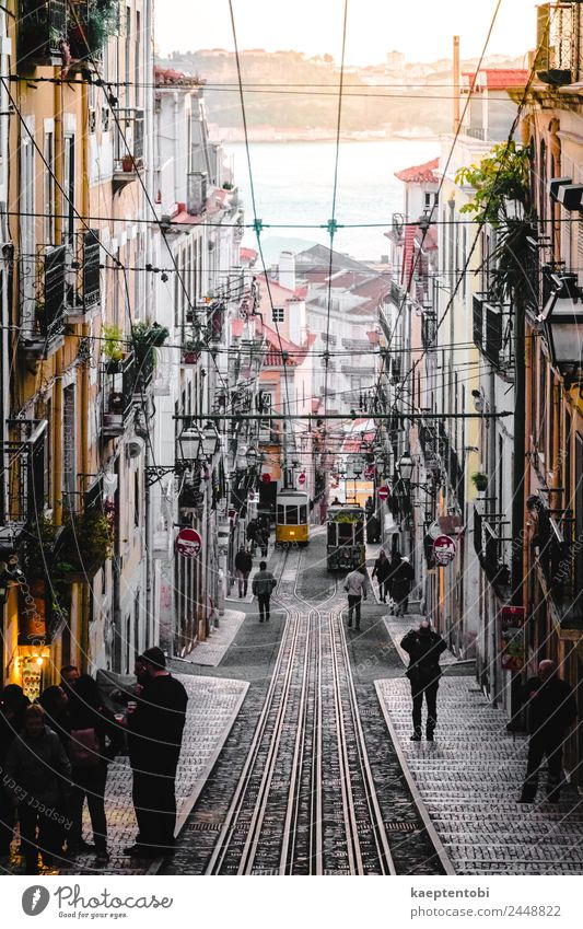 Streets Of Lisboa Leisure and hobbies Vacation & Travel Tourism Trip Sightseeing City trip Summer Summer vacation Sun Ocean Human being Family & Relations