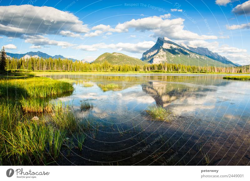 Panorama of Mount Rundle mountain peak with blue sky Beautiful Summer Mountain Nature Landscape Sky Clouds Grass Forest Pond Lake Blue Green Colour