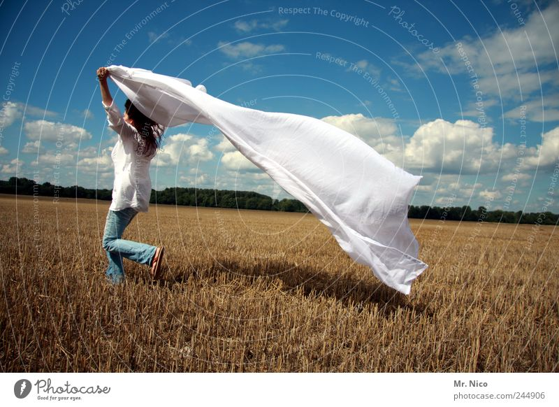 Woman Nature White Summer Joy Clouds Adults Environment Landscape Freedom Happy Style Weather Wind Field Walking