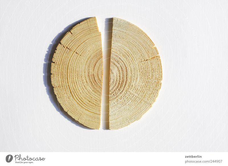 Nature Tree Flower Wood Good Middle Broken Wooden board Slice Half Column Annual ring Divided
