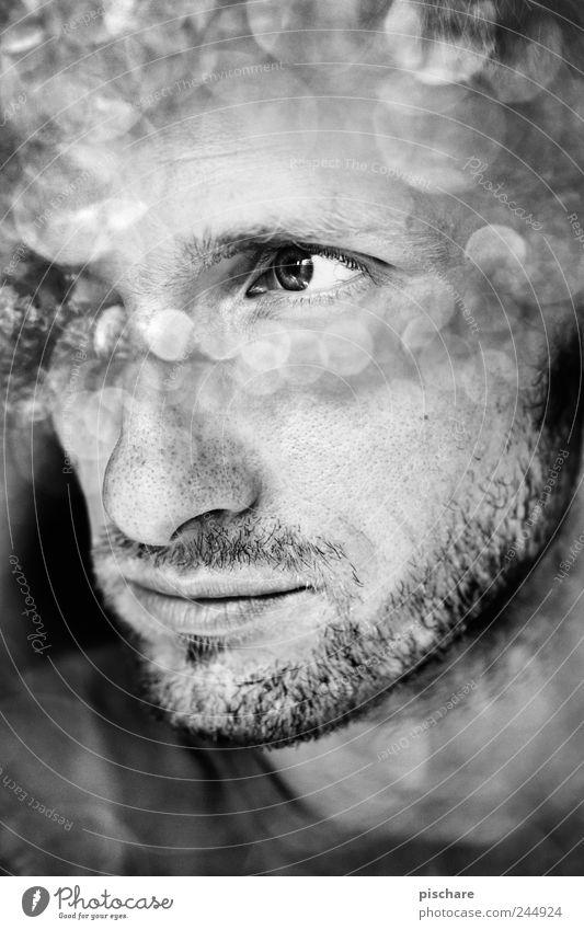 Man Face Calm Wait Adults Masculine Observe Facial hair 30 - 45 years