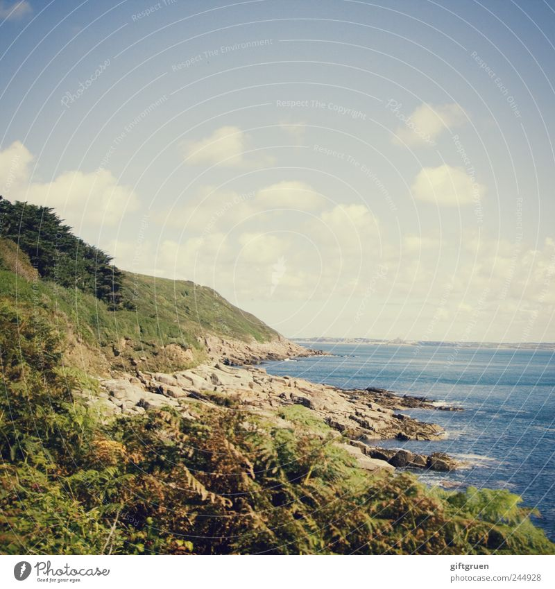 Nature Sky Water Plant Summer Beach Ocean Clouds Meadow Grass Stone Landscape Coast Waves Environment Weather