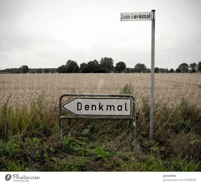 Landscape Think Field Signs and labeling Grief Tourism Gloomy Characters Signage Past Monument Meditative Left Memory Road marking