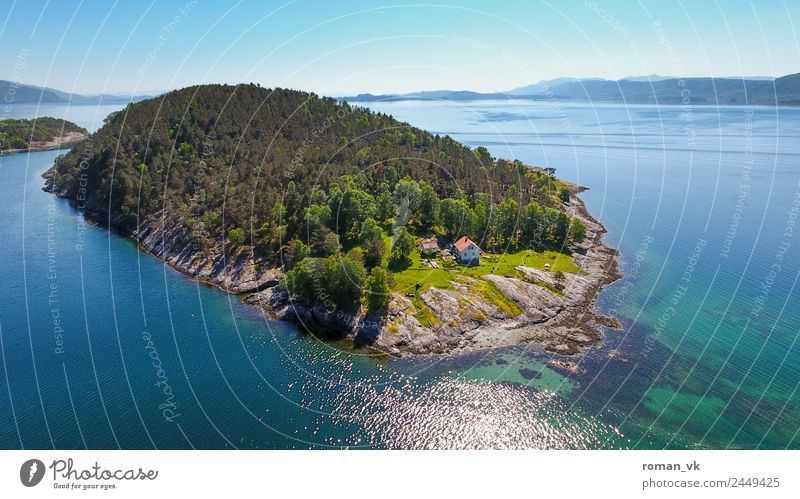 Norwegian Island (Southwest) Environment Nature Landscape Plant Earth Cloudless sky Beautiful weather Tree Hill Rock Coast Fjord Ocean Spring fever Life