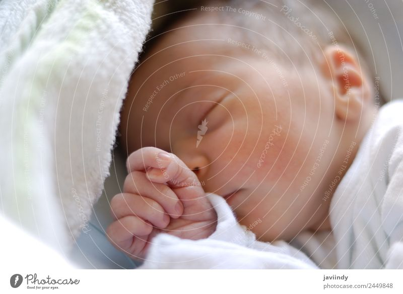 1955ed7d8 Newborn baby girl in hostpital bed sleeping. - a Royalty Free Stock Photo  from Photocase