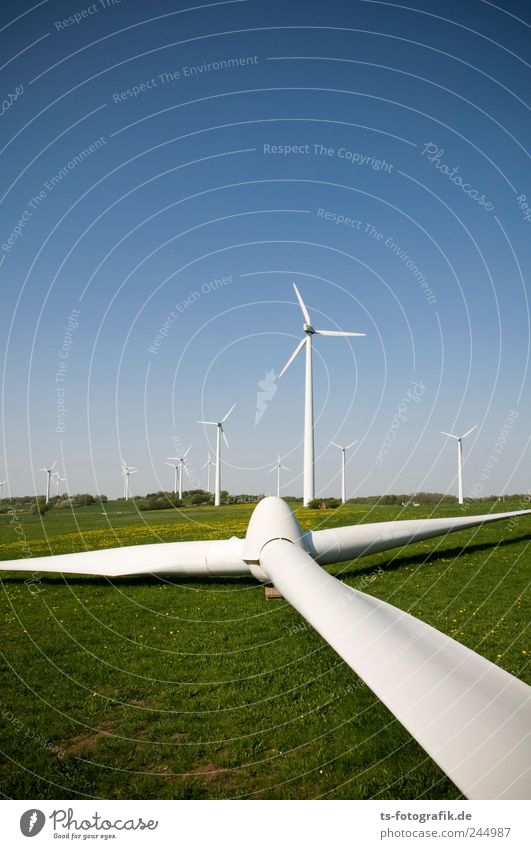 Nature Blue Green Meadow Grass Landscape Air Environment Wind Earth Horizon Energy Energy industry Lie Technology Broken