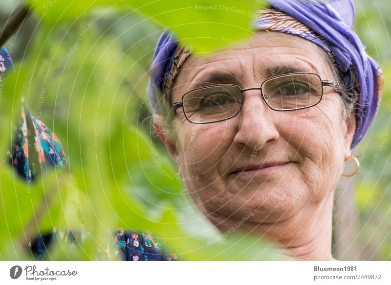 Close-up portrait of a senior woman at garden Vegetable Organic produce Vegetarian diet Lifestyle Style Healthy Healthy Eating Well-being Leisure and hobbies