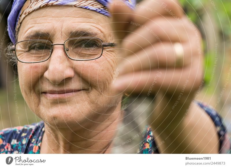 Close-up portrait of a senior Muslim woman with eyeglass at garden Vegetable Lifestyle Healthy Healthy Eating Wellness Well-being Leisure and hobbies Garden