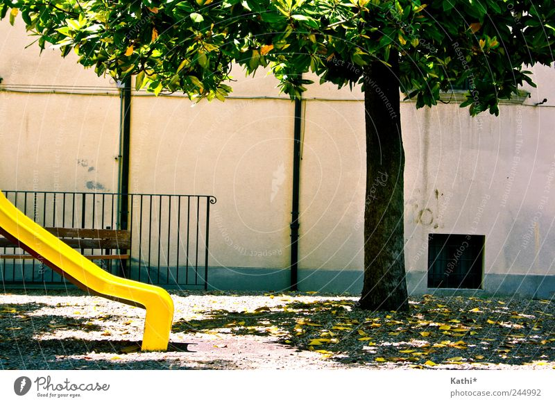 Nature Vacation & Travel Green Summer Tree Relaxation Joy Environment Yellow Wall (building) Wall (barrier) Playing Garden Park Leisure and hobbies Idyll