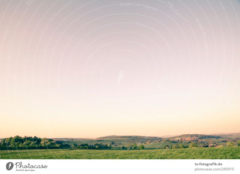 Vogelsberg colour palette Environment Nature Landscape Animal Earth Sky Cloudless sky Horizon Sunrise Sunset Summer Beautiful weather Tree Meadow Field Hill
