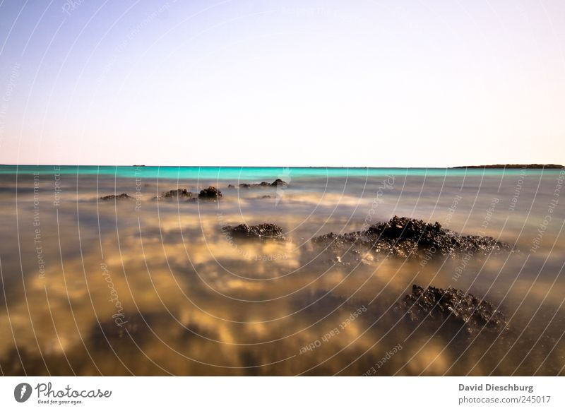 The fascination of the sea Far-off places Freedom Nature Landscape Water Cloudless sky Summer Beautiful weather Rock Coast Reef Coral reef Ocean Island Blue