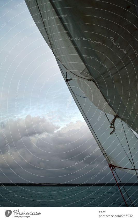 Sky Blue Summer Beach Ocean Clouds Sports Coast Wind Trip Island Sail Beautiful weather Sailing trip