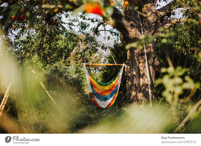 Hammock in summer Lifestyle Harmonious Well-being Contentment Relaxation Calm Leisure and hobbies Vacation & Travel Tourism Freedom Summer Summer vacation