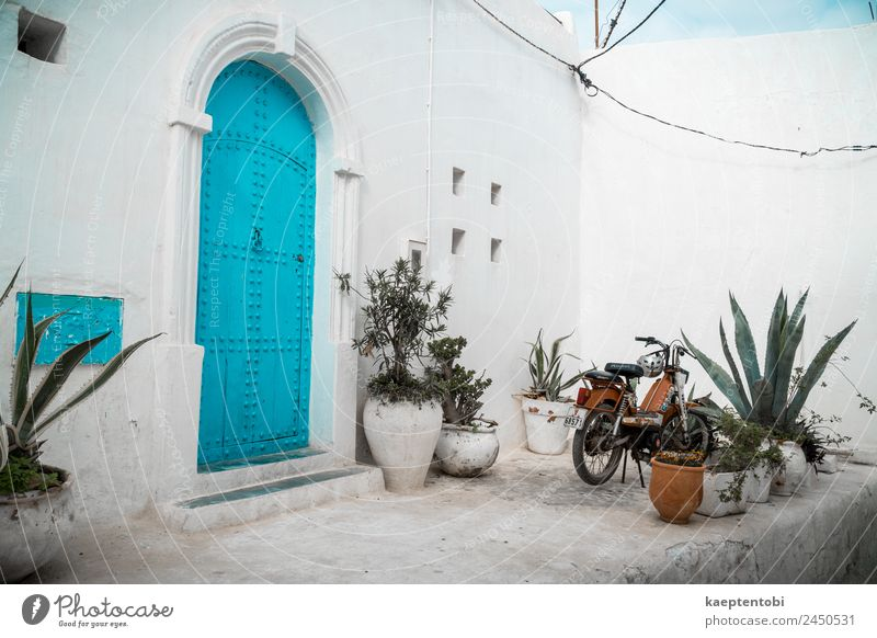 Mediterranean Style In Morocco Lifestyle Leisure and hobbies Vacation & Travel Tourism Trip Sightseeing City trip Summer Summer vacation