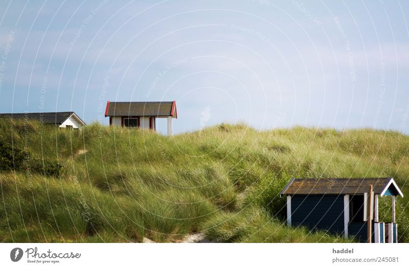Sky Joy Summer Vacation & Travel Beach Ocean Calm House (Residential Structure) Relaxation Landscape Grass Happy Sand Coast Contentment Leisure and hobbies