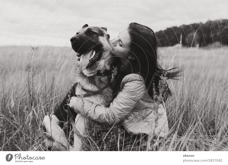 girl hugging a dog in the autumn field Human being Nature Dog Youth (Young adults) Young woman Landscape Animal Joy 18 - 30 years Adults Autumn Love Feminine