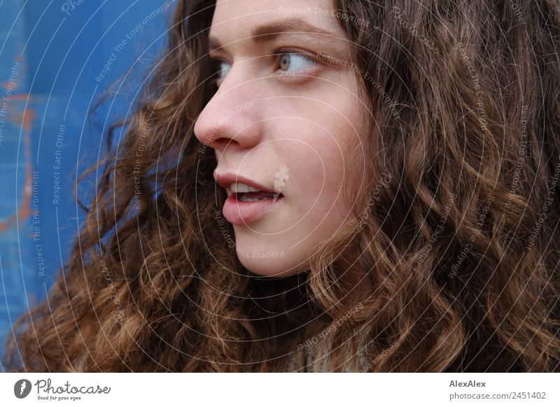 Lateral portrait of a young woman with long, curly, brunette hair already Hair and hairstyles Face Well-being Young woman Youth (Young adults) 18 - 30 years