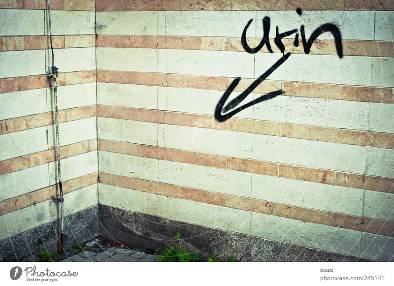 freehand Wall (barrier) Wall (building) Facade Characters Line Arrow Stripe Authentic Dirty Funny Trashy Gloomy Urine Corner Lightning rod Typography