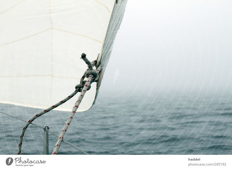fog Sailing Ocean Aquatics Water Weather Wind Fog Baltic Sea Navigation Sport boats Yacht Sailboat Sailing ship Threat Blue White Dew Knot Waves Horizon