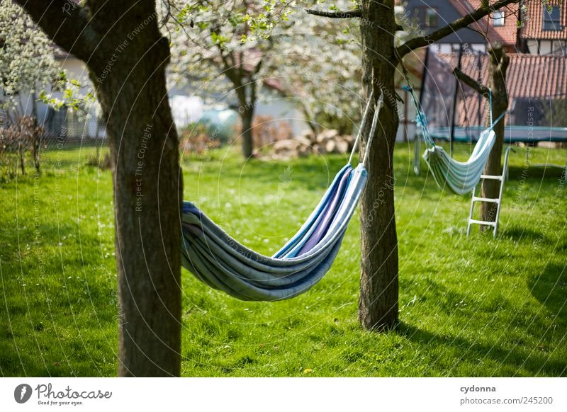 Relax Lifestyle Harmonious Well-being Calm Leisure and hobbies Vacation & Travel Environment Nature Spring Tree Grass Garden Meadow Freedom Serene Idyll