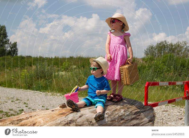 A boy and a girl in toddlerhood are standing on a log Beach Human being Baby Family & Relations Relaxation Vacation & Travel Stand beach chair caucasian