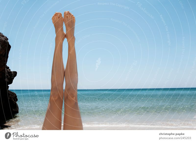 Joy Summer Vacation & Travel Beach Ocean Feminine Legs Feet Waves Lie Thin Joie de vivre (Vitality) Beautiful weather Sunbathing Summer vacation Cloudless sky