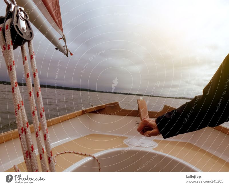 single-handed sailor Sports Aquatics Arm Hand 1 Human being Environment Nature Air Water Coast Fjord Baltic Sea Sustainability Pin Sailing Dinghy String Rope