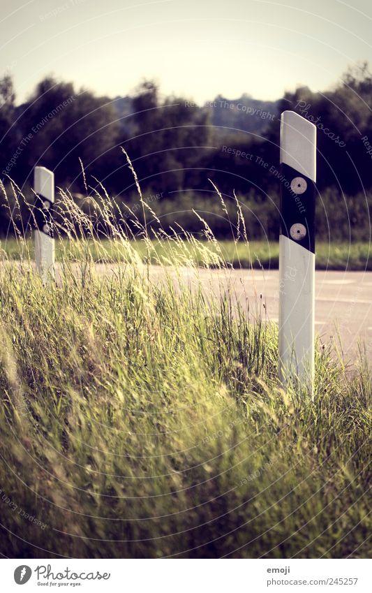Nature Green Grass Wind Transport Beautiful weather Roadside Sun blind