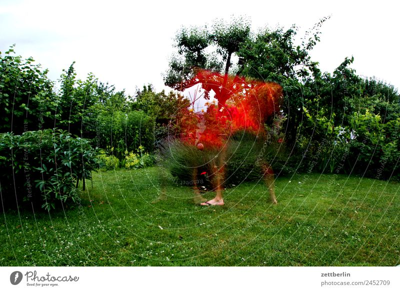 Human being Sky Nature Man Heaven Summer Plant Red Meadow Movement Grass Art Playing Garden Copy Space Glittering