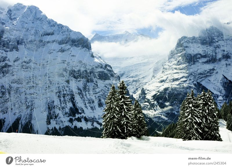 Grindelwald Winter vacation Switzerland Snow sunny Mountain Alps mean horn