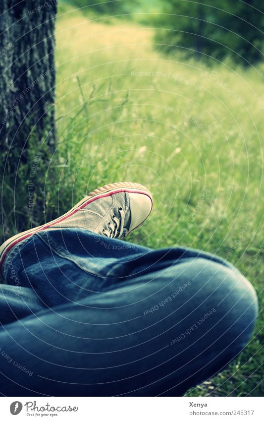 time-out Legs Feet Tree Grass Park Jeans Sneakers Relaxation Dream Blue Green Serene Calm Leisure and hobbies Break Loneliness Meditative Colour photo