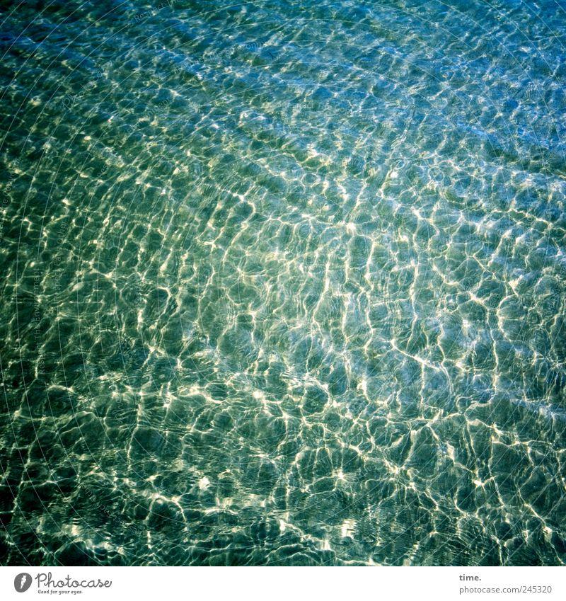Water Green Blue Ocean Yellow Landscape Environment Sand Coast Waves Glittering Wet Arrangement North Sea Damp Transparent