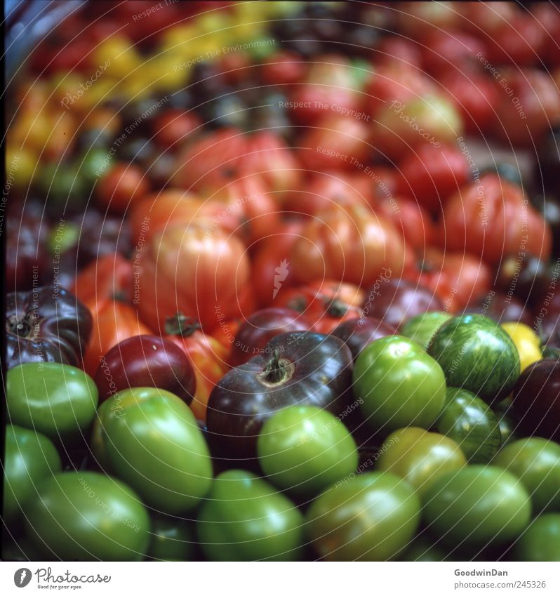 Green Beautiful Red Exceptional Fruit Glittering Food Nutrition Good Many Round Uniqueness Simple Vegetable Near Firm