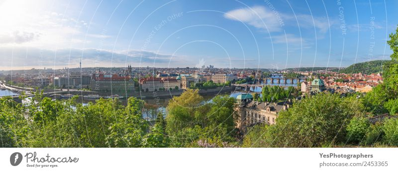 Prague city panorama in summer Beautiful Vacation & Travel Summer Art Landscape Beautiful weather Tree Flower Old town Bridge Building Tourist Attraction