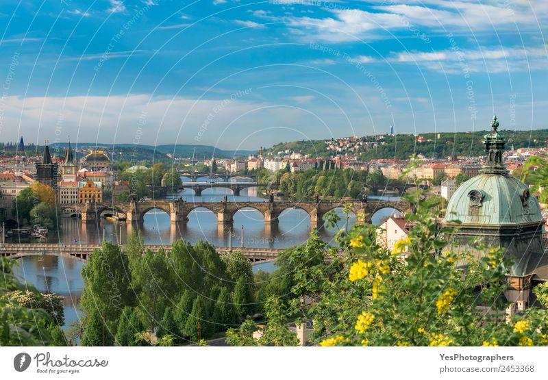 Vltava river with great bridges in Prague Beautiful Vacation & Travel Summer Art Landscape Beautiful weather Tree Flower Old town Bridge Building Architecture