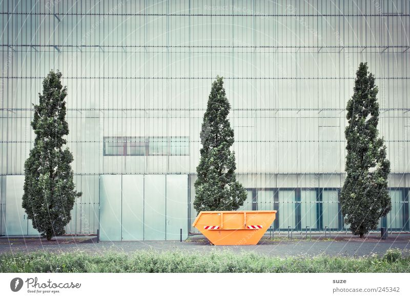Museum of Fine Arts Culture Tree Meadow Manmade structures Building Facade Window Container Gloomy Town Green Orange Arrangement Growth Change Entrance Cypress