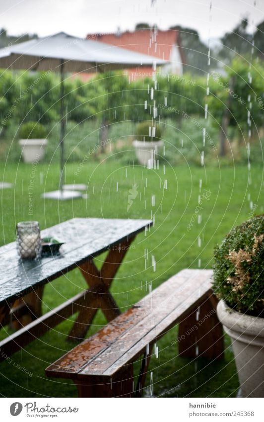 "summer weather Garden Table Bad weather Rain Park Meadow Wood Wet Brown Green Outdoor furniture ""bank meadow,"" Bench Sunshade Cold Dank Colour photo"