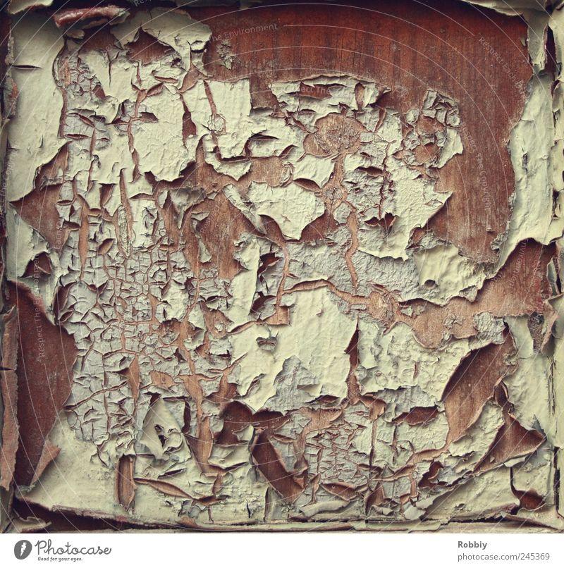 Old White Window Wood Brown Door Blaze Gloomy Broken Transience Past Decline Trashy Nostalgia Varnish Undulating