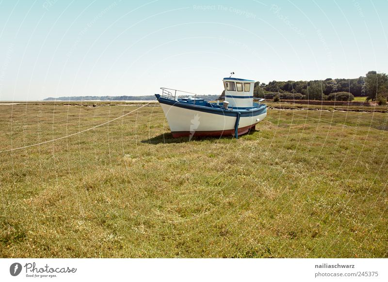 on the dry Fisherman Fishing boat Fishery Watercraft Navigation Nature Landscape Summer Beach Brittany Lie Brown Green White Stagnating Colour photo