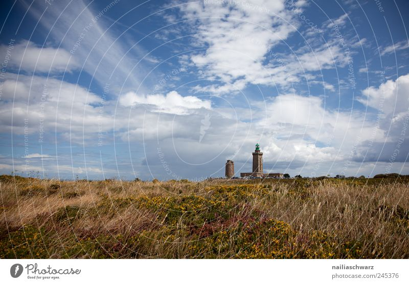 Cap Frehel Nature Landscape Sky Clouds Summer Beautiful weather Grass Bushes Bog Marsh Heathland Europe Manmade structures Building Lighthouse Navigation