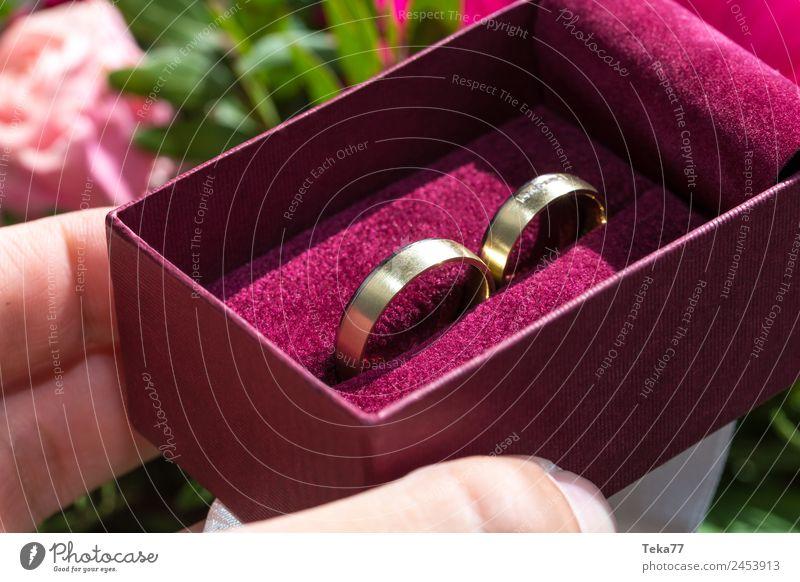 Woman Adults Love Pink Metal Esthetic Gold Sign Wedding Jewellery Ring Wedding band