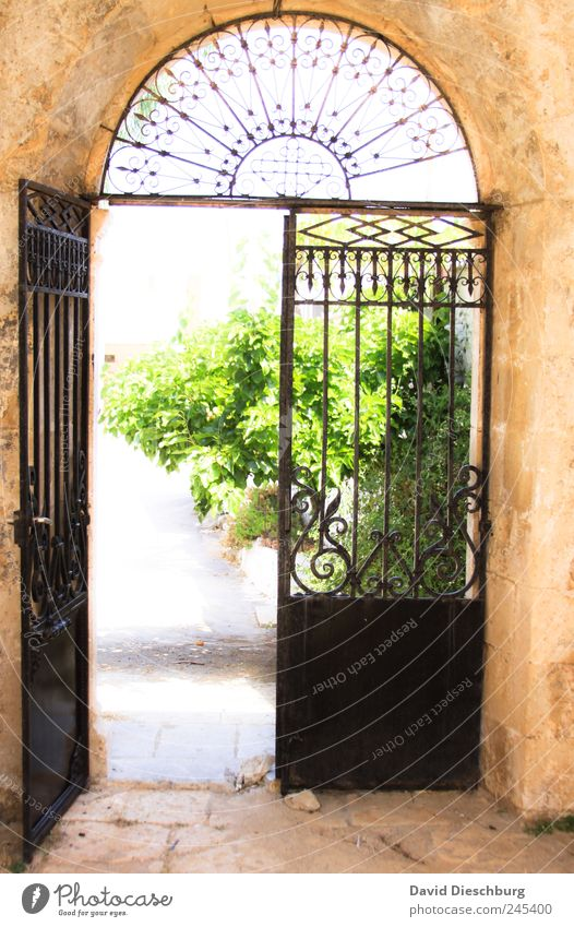 The door to the paradise Plant Summer Foliage plant Garden Park Door Blue Brown Green Gate Open Colour photo Exterior shot Structures and shapes Deserted Day