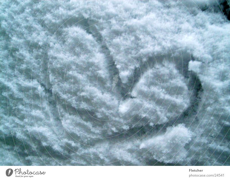 White Love Cold Snow Heart Flake