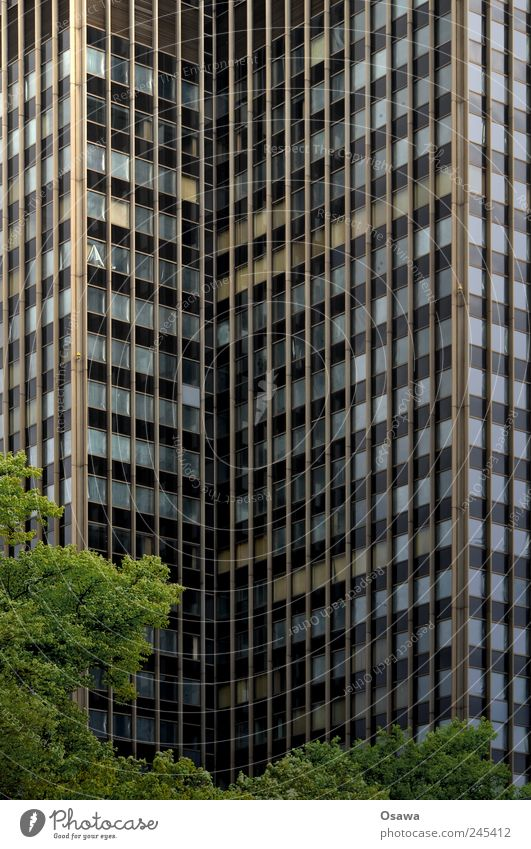 Berlin Steglitz steglitz Gyroscope High-rise Facade Window Glass Building Office building Tree Leaf Green Gray Deserted Architecture