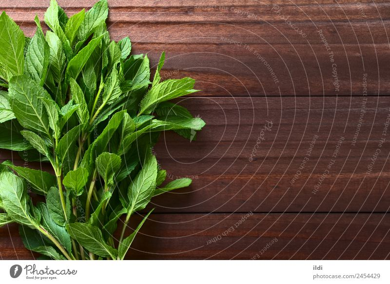 Fresh Mint Herbs and spices Tea Alternative medicine Plant Leaf Natural Green spearmint Bundle remedy Aromatic Fragrant sprig flavor healthy herbal Raw food