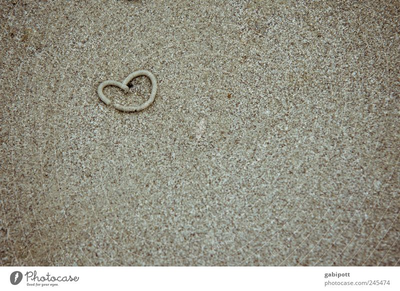 sand worm love Vacation & Travel Tourism Summer Summer vacation Beach Sand Heart Sincere Cute Brown Emotions Happy Love Romance Sandy beach Infatuation