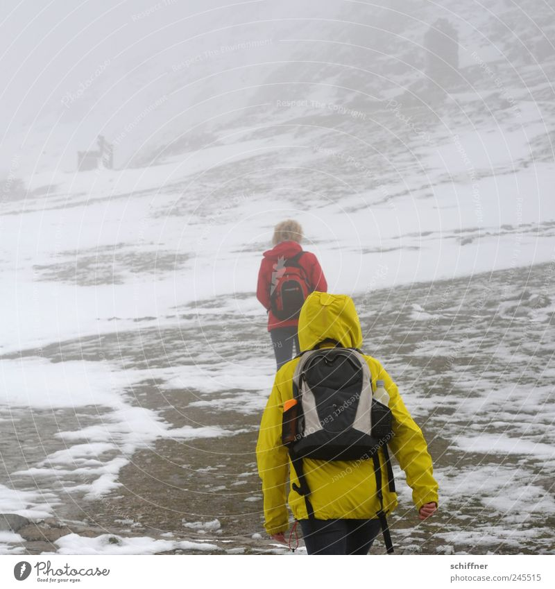 Snow - that's the summit! 2 Human being Nature Bad weather Gale Fog Ice Frost Rock Alps Mountain Snowcapped peak Hiking Threat Masked Exterior shot