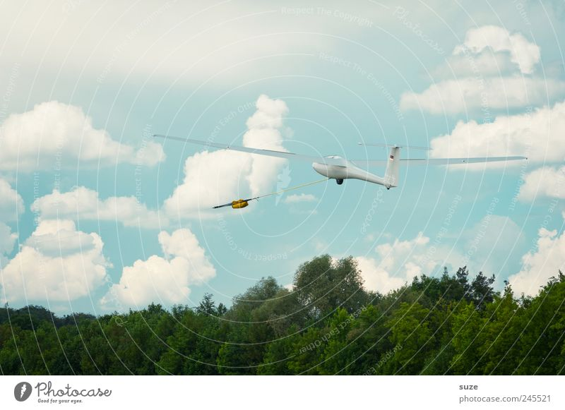 flextime Freedom Aviation Environment Sky Clouds Climate Beautiful weather Wind Two-seater Sailplane Flying Friendliness Bright Blue White Gliding Floating Easy