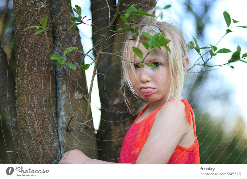 Child Nature Beautiful Tree Red Girl Leaf Face Forest Emotions Hair and hairstyles Garden Park Infancy Mouth Bushes