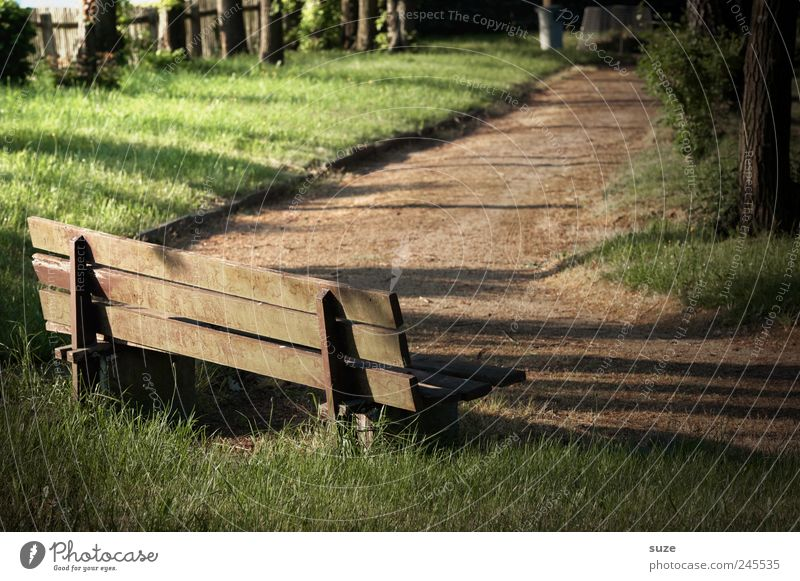 corner bench Calm Garden Meadow Lanes & trails Wood Brown Green Peace Break Target Bench Cemetery Wooden bench Fence Mysterious Colour photo Subdued colour